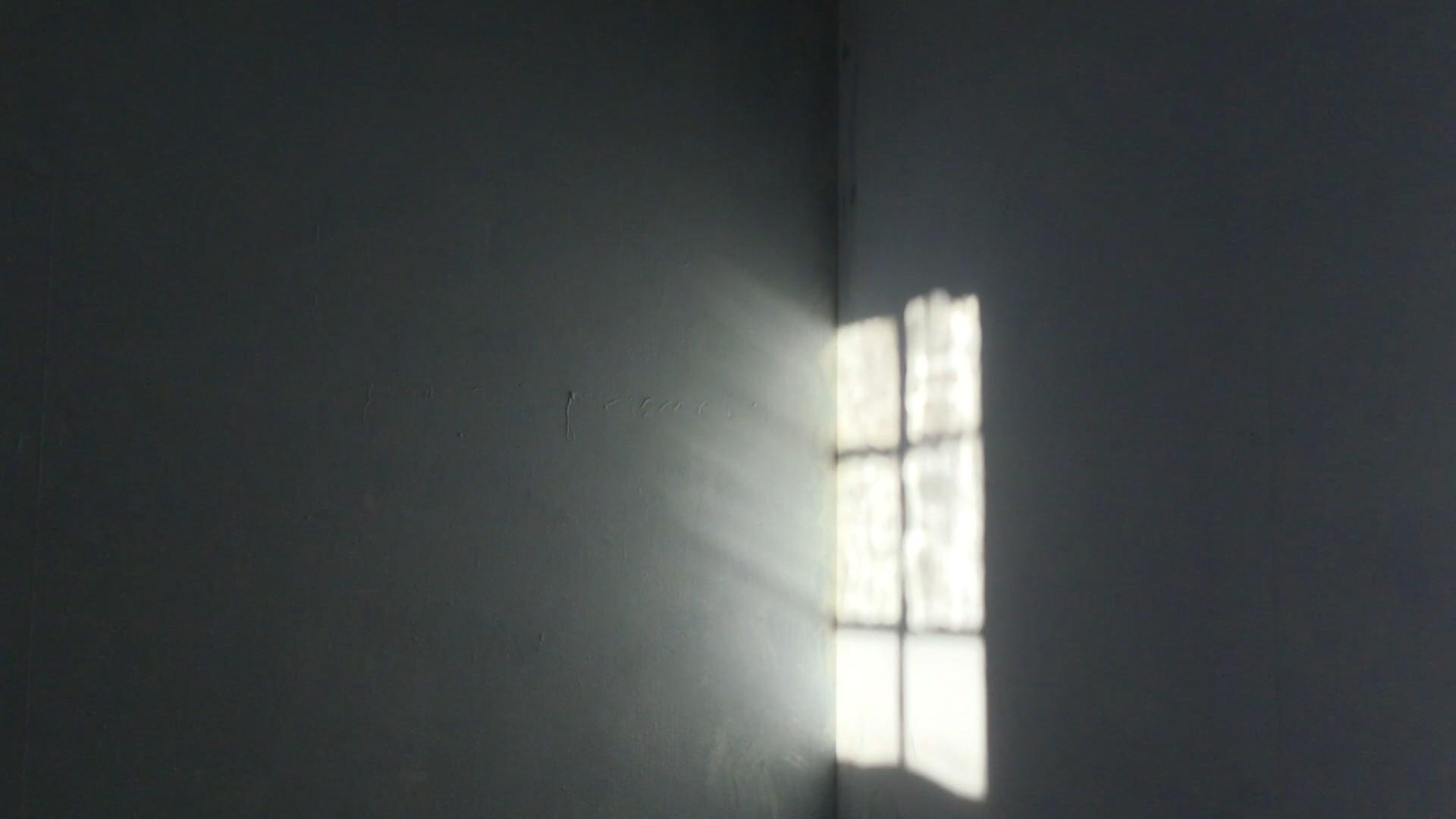 shadows hold their breath